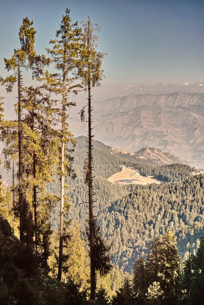Eagle eye view of Khajjiar meadow surrounded by a forest